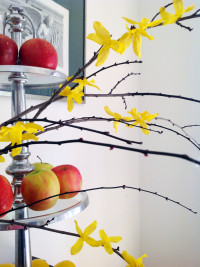 Semi-Faux Yellow Forsythia Branches (And 4 More Tips To Make Them Look Really Real!)