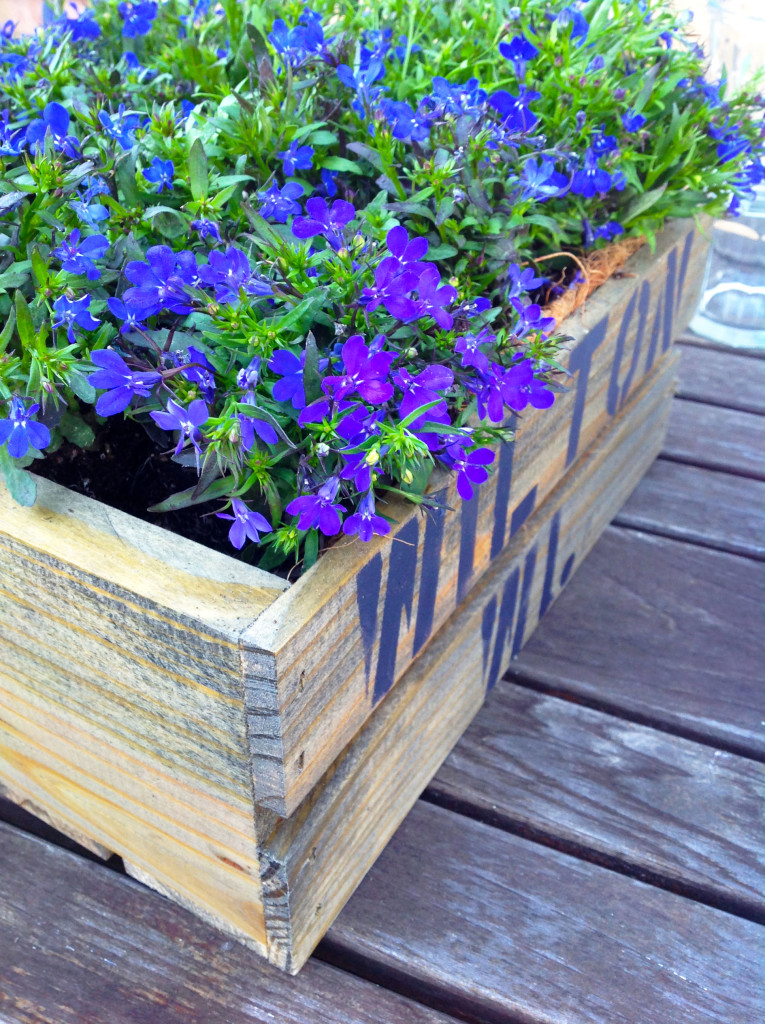DIY Vintage Crate With Planted Flowers